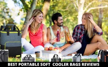 best portable soft cooler bags